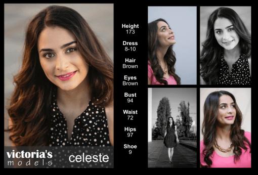 COMP Celeste 8.17